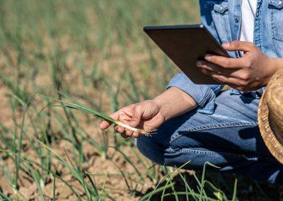 Agrar-Saatkontrolle-Outdoor-Tablet