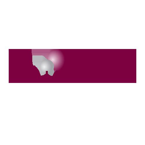 twinhead